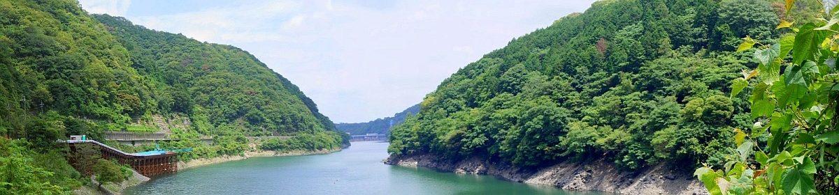 地域水環境 システム 研究領域