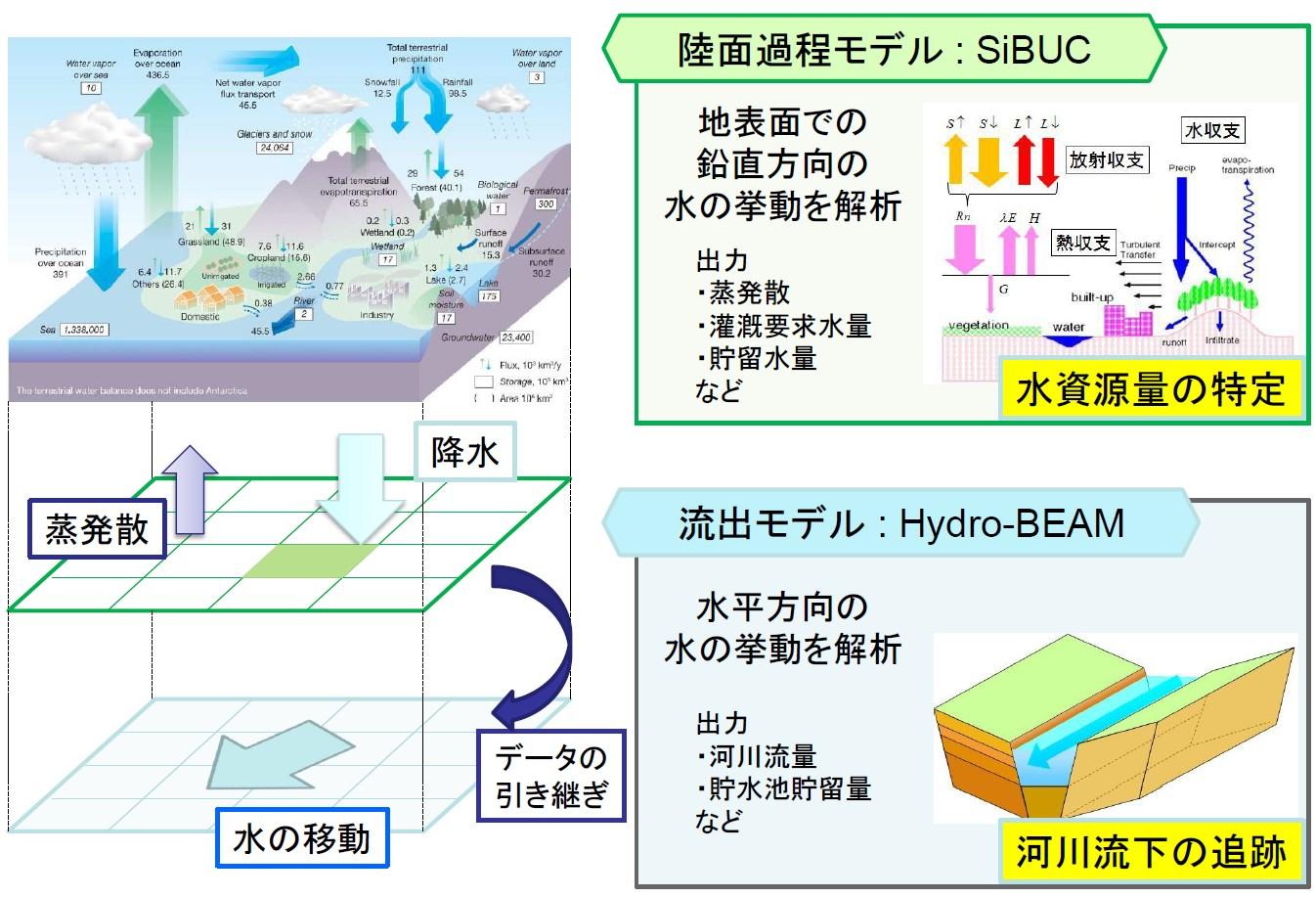 流域の水・熱・物質循環を記述する数値モデルの開発