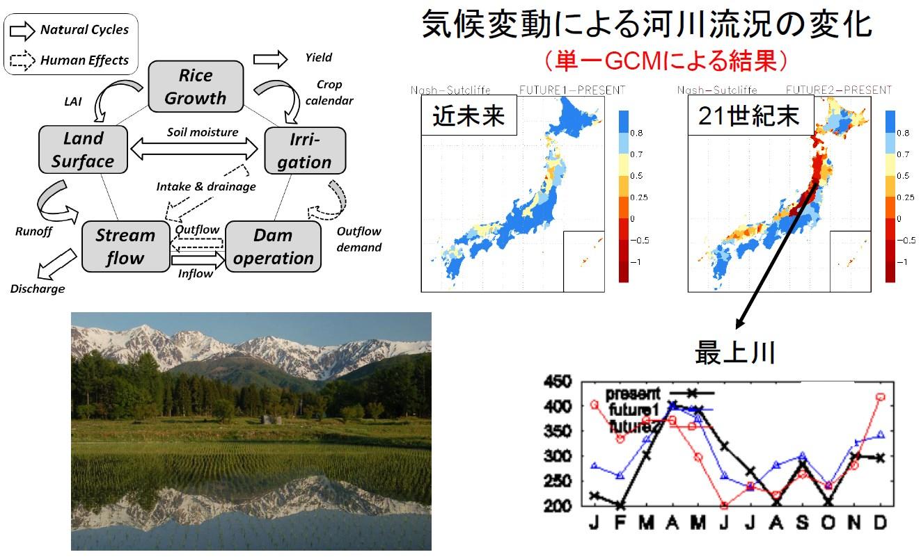 気候変動による日本各地の水資源量変動予測
