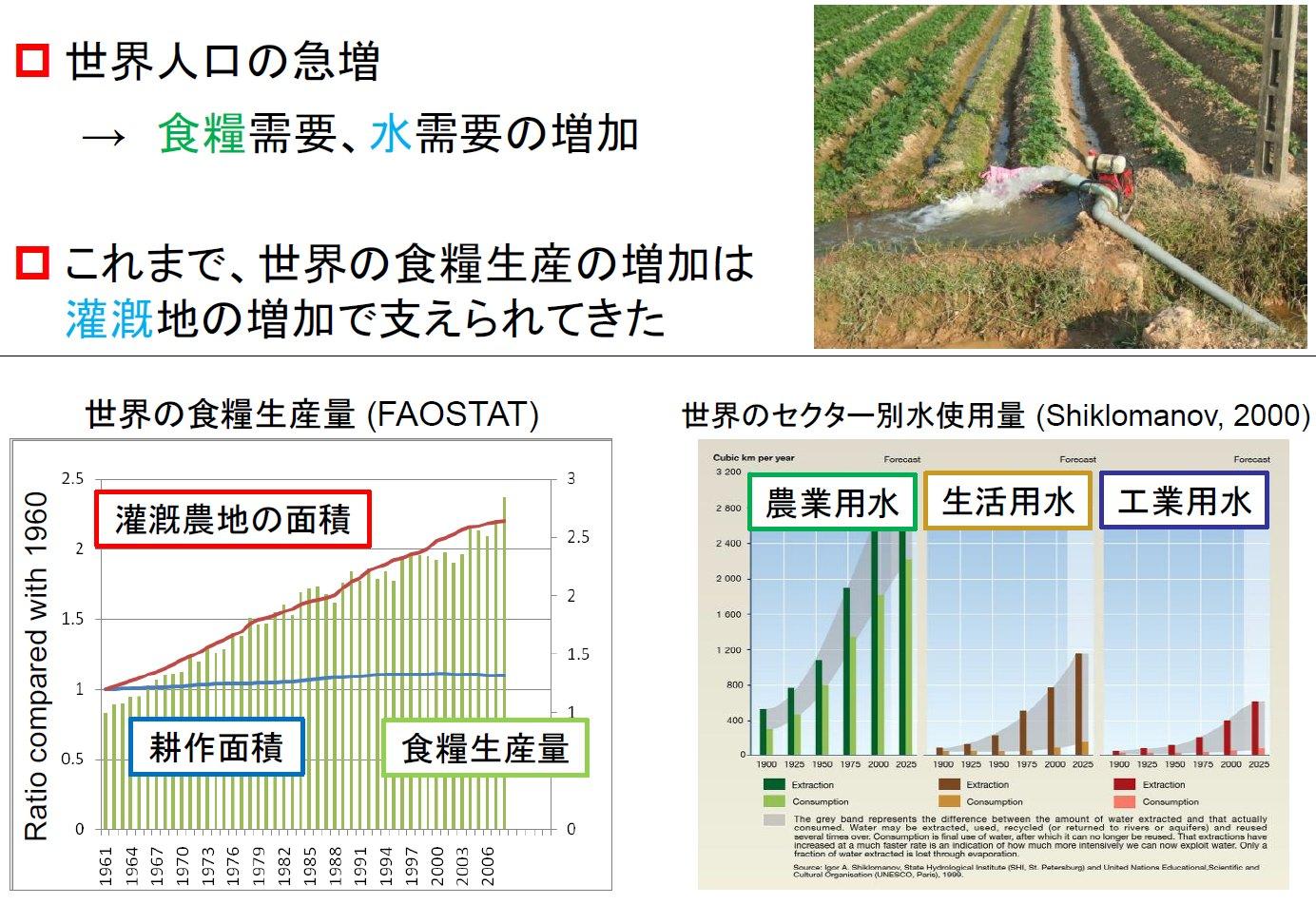 世界の水資源問題(食料の安全保障)